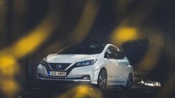 Nissan Leaf 2/V P Motors nuotrauka
