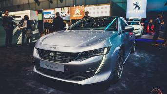 Peugeot 508/Vytauto Pilkausko nuotrauka