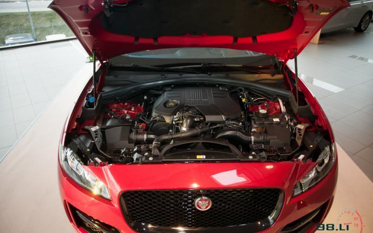 Jaguar F-Pace/Vytauto Pilkausko nuotrauka
