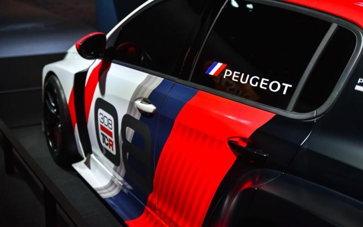 Peugeot 308 TCR/Vytauto Pilkausko nuotrauka